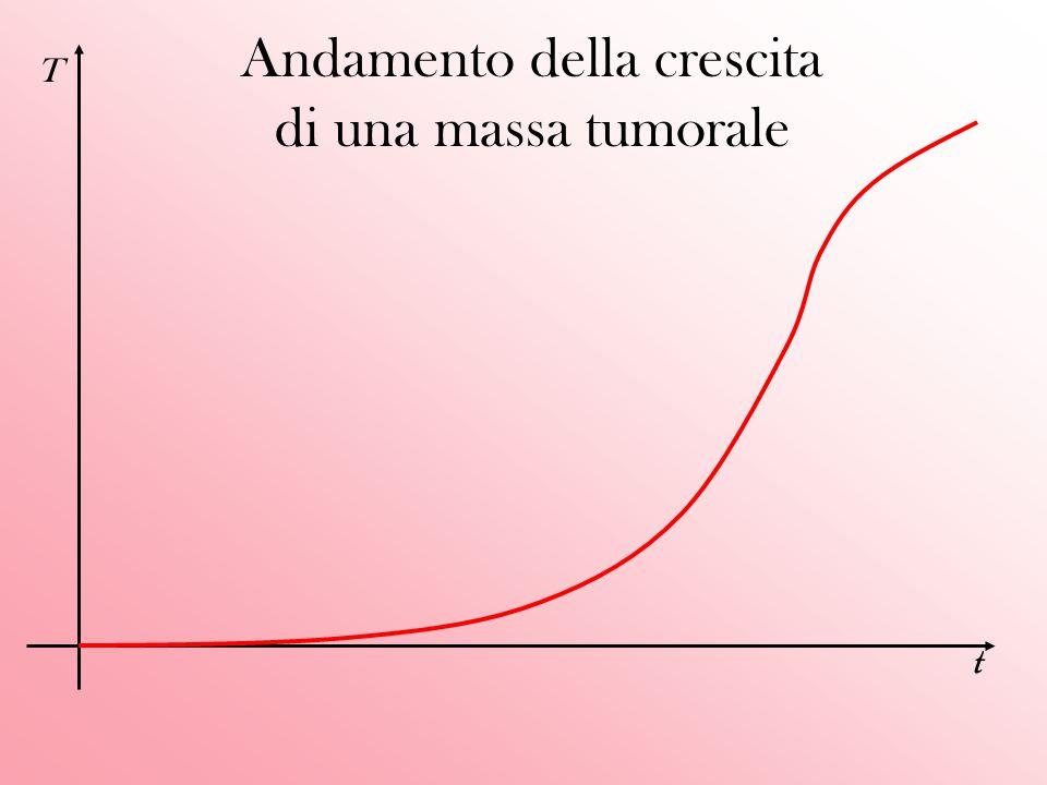 Conclusioni Dalle due equazioni si evince istantaneamente come i termini di produzione G e T dipendano direttamente da velocità di proliferazione delle cellule tumorali e da velocità di convezione dei fattori chimici; a loro volta questi due fattori dipendono dai relativi coefficienti di diffusione e degradazione.