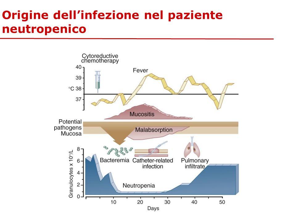 Origine dell'infezione nel paziente neutropenico