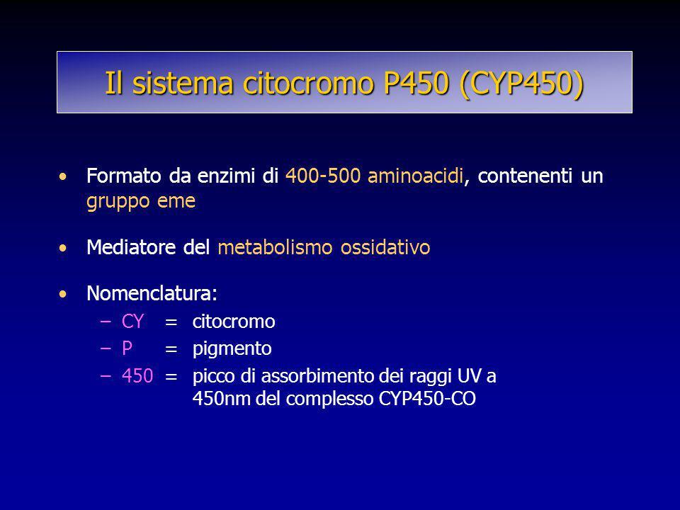 Il sistema citocromo P450 (CYP450) Formato da enzimi di 400-500 aminoacidi, contenenti un gruppo eme Mediatore del metabolismo ossidativo Nomenclatura
