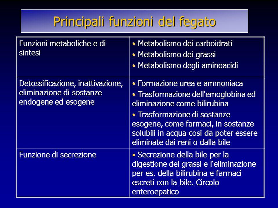 Principali funzioni del fegato Funzioni metaboliche e di sintesi Metabolismo dei carboidrati Metabolismo dei grassi Metabolismo degli aminoacidi Detos
