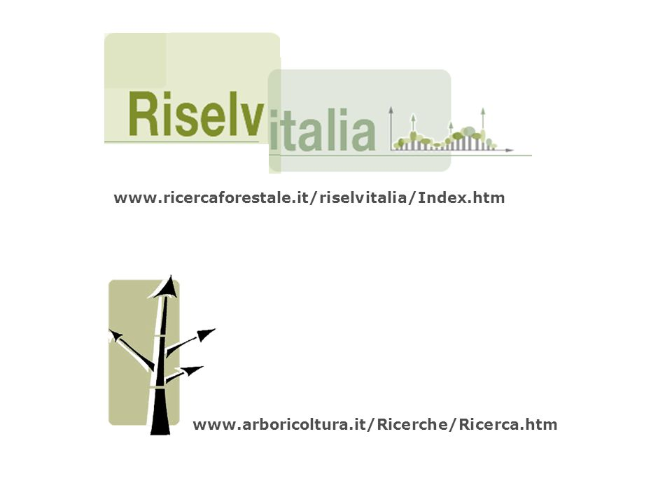 www.arboricoltura.it/Ricerche/Ricerca.htm www.ricercaforestale.it/riselvitalia/Index.htm