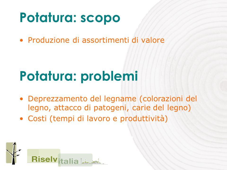 Potatura: scopo Produzione di assortimenti di valore Potatura: problemi Deprezzamento del legname (colorazioni del legno, attacco di patogeni, carie del legno) Costi (tempi di lavoro e produttività)