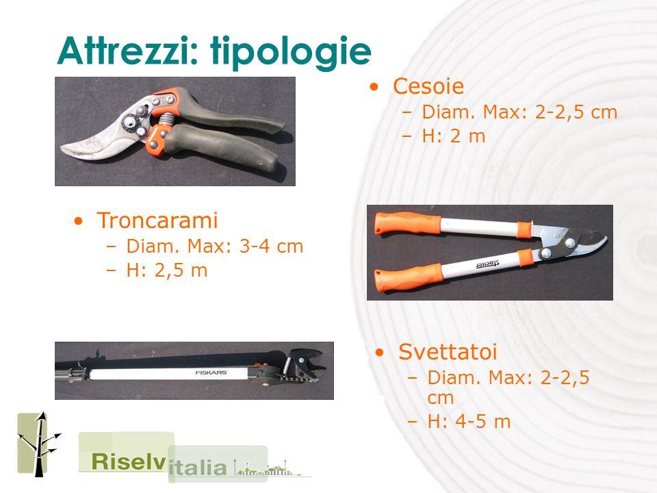 Cesoie –Diam. Max: 2-2,5 cm –H: 2 m Attrezzi: tipologie Troncarami –Diam.