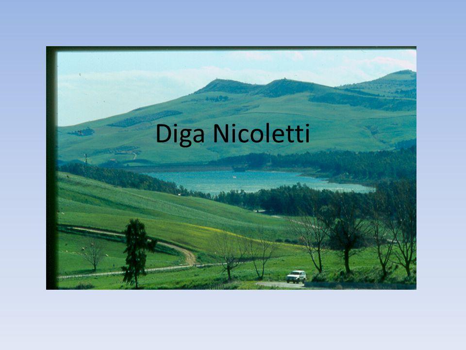 Diga Nicoletti