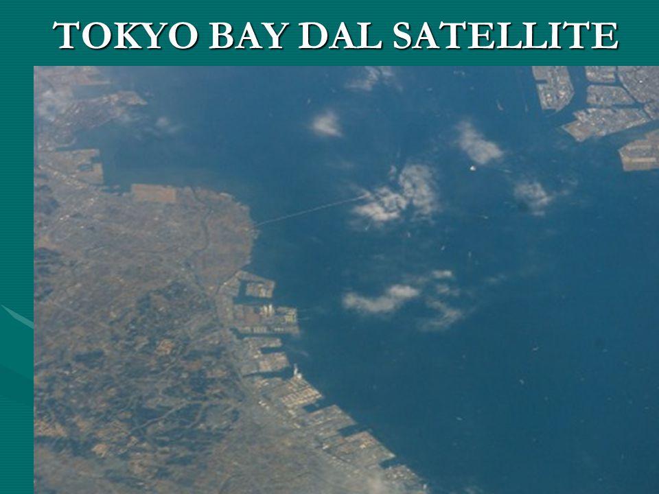 TOKYO BAY DAL SATELLITE