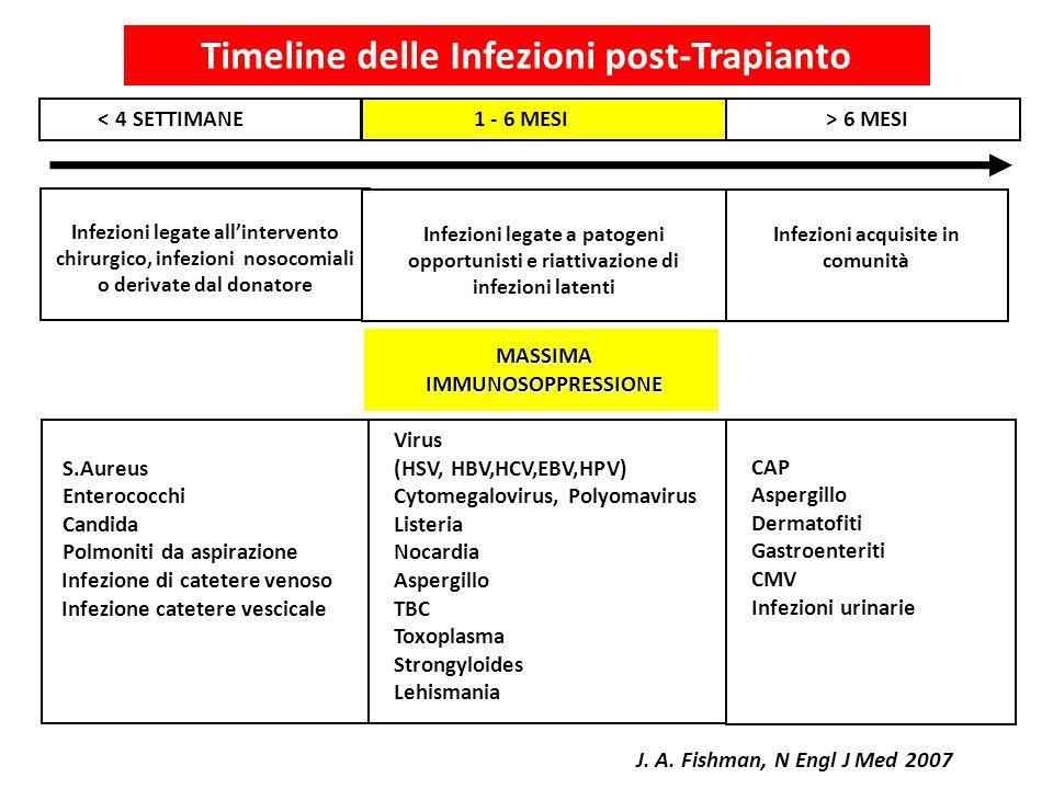 Infezioni legate all'intervento chirurgico, infezioni nosocomiali o derivate dal donatore Infezioni acquisite in comunità Infezioni legate a patogeni