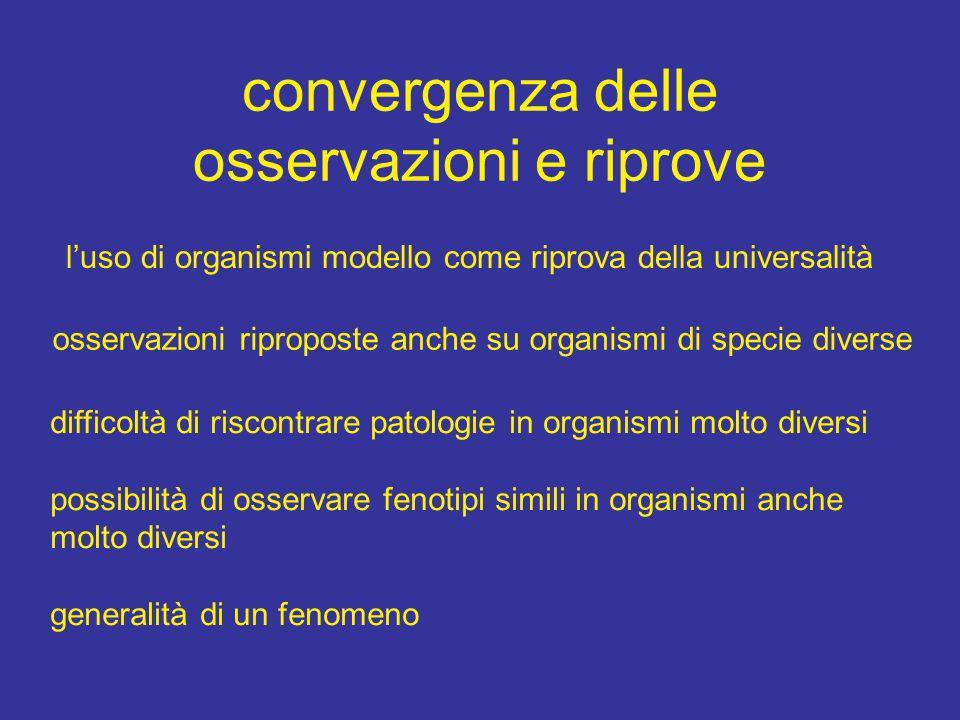 convergenza delle osservazioni e riprove l'uso di organismi modello come riprova della universalità osservazioni riproposte anche su organismi di spec