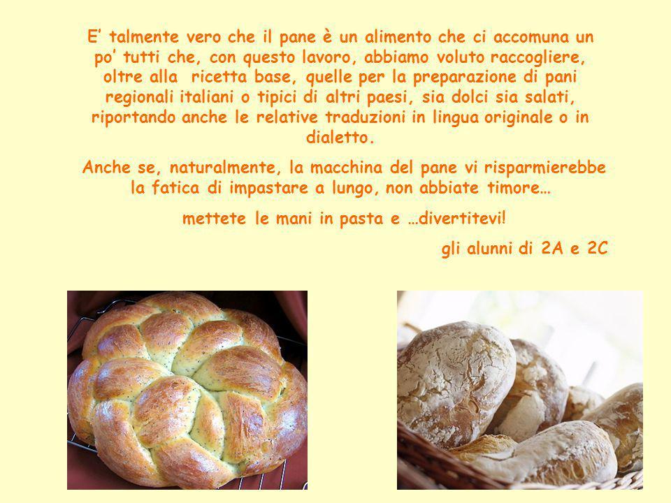 Ingredienti: 500 gr di farina bianca 200 gr di acqua tiepida 15 gr di sale 30 gr di lievito di birra in panetto 4 cucchiai di olio d'oliva Pane: ricetta base