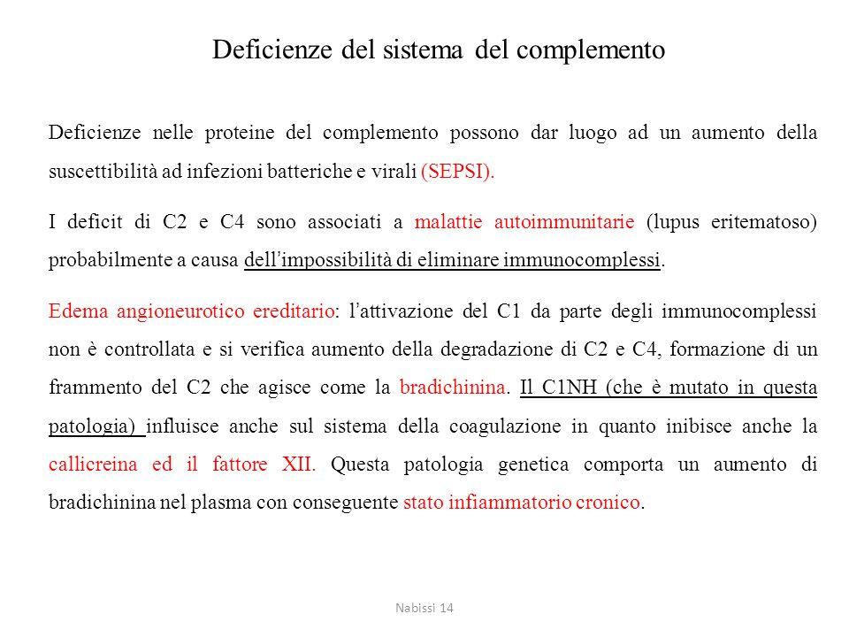 Deficienze del sistema del complemento Deficienze nelle proteine del complemento possono dar luogo ad un aumento della suscettibilità ad infezioni bat