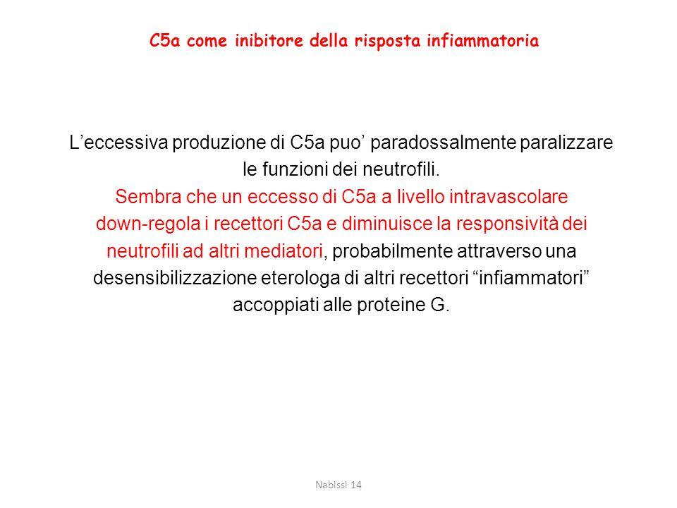 L'eccessiva produzione di C5a puo' paradossalmente paralizzare le funzioni dei neutrofili. Sembra che un eccesso di C5a a livello intravascolare down-