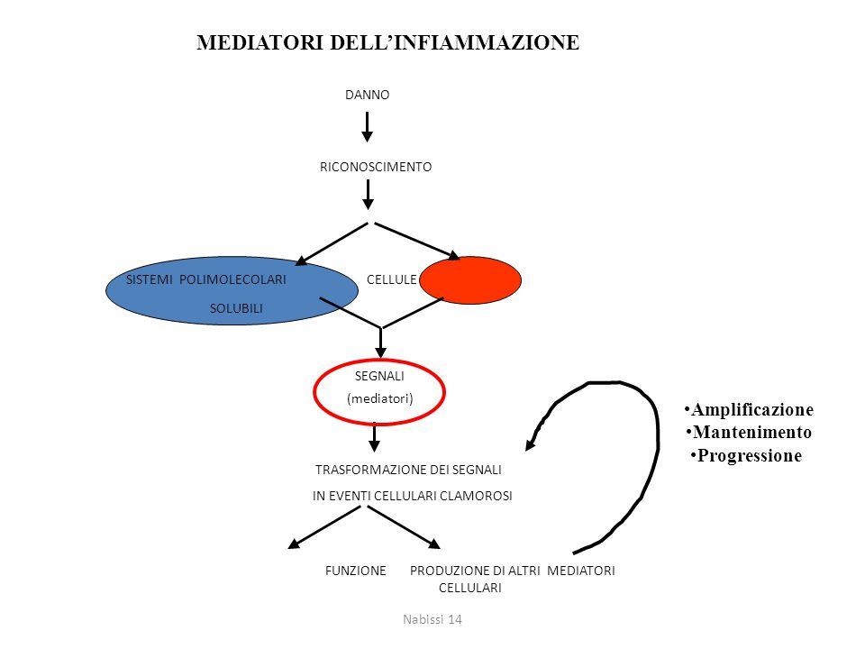 DANNO RICONOSCIMENTO FUNZIONE PRODUZIONE DI ALTRI MEDIATORI CELLULARI TRASFORMAZIONE DEI SEGNALI IN EVENTI CELLULARI CLAMOROSI SEGNALI (mediatori) SIS