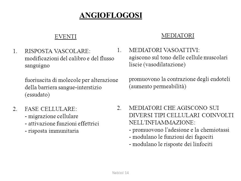 EVENTI 1.RISPOSTA VASCOLARE: modificazioni del calibro e del flusso sanguigno fuoriuscita di molecole per alterazione della barriera sangue-interstizi