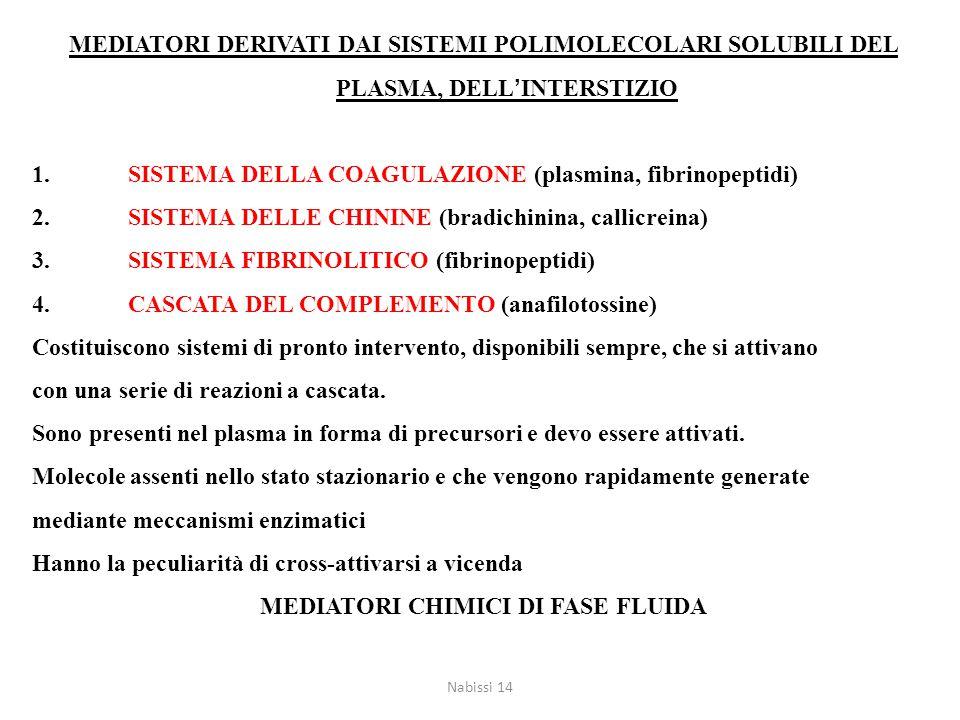 MEDIATORI DERIVATI DAI SISTEMI POLIMOLECOLARI SOLUBILI DEL PLASMA, DELL'INTERSTIZIO 1.SISTEMA DELLA COAGULAZIONE (plasmina, fibrinopeptidi) 2.SISTEMA