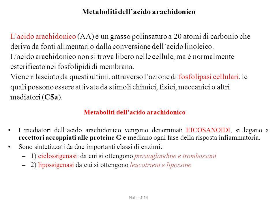 L'acido arachidonico (AA) è un grasso polinsaturo a 20 atomi di carbonio che deriva da fonti alimentari o dalla conversione dell'acido linoleico. L'ac