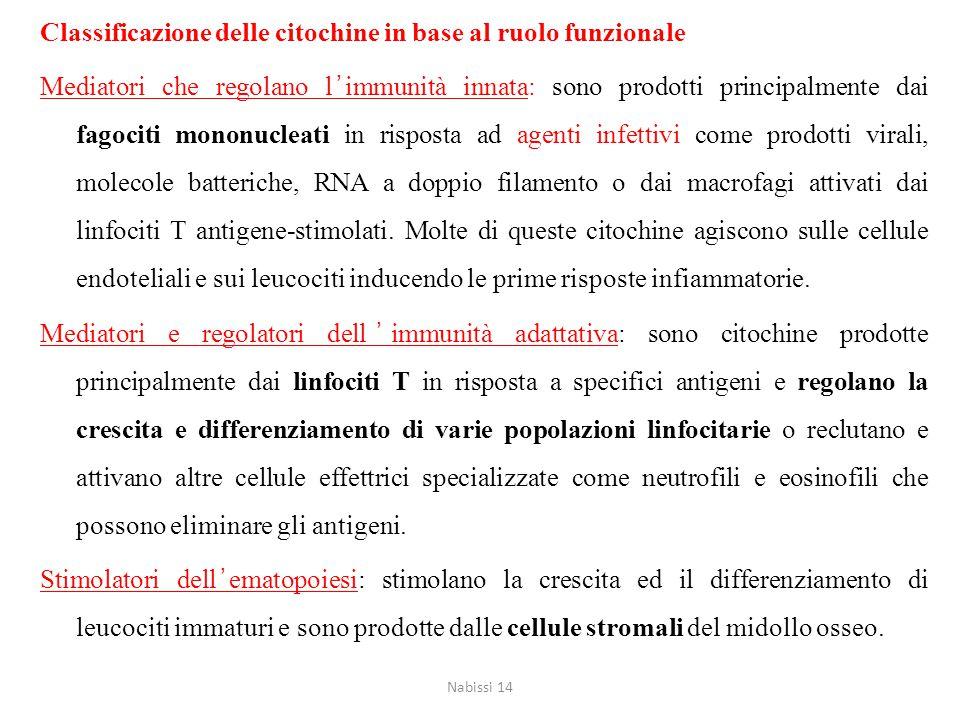 Classificazione delle citochine in base al ruolo funzionale Mediatori che regolano l'immunità innata: sono prodotti principalmente dai fagociti mononu