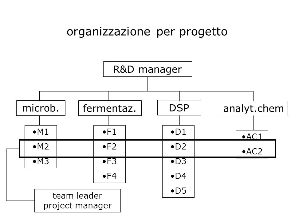 R&D manager microb. fermentaz. DSP analyt.chem M1 M2 M3 F1 F2 F3 F4 D1 D2 D3 D4 D5 AC1 AC2 organizzazione per progetto team leader project manager