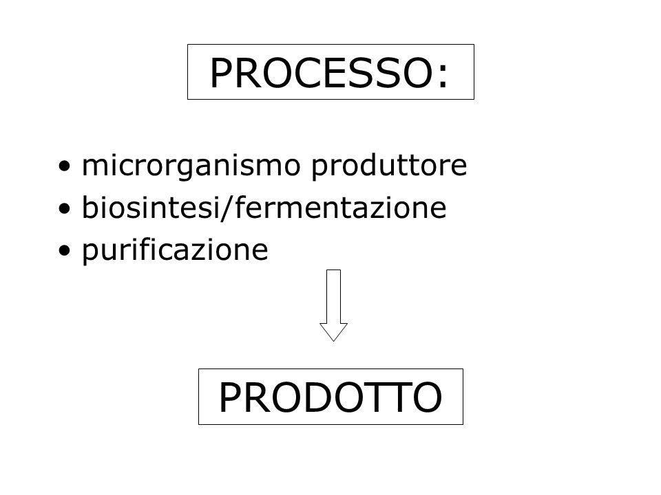 PROCESSO: microrganismo produttore biosintesi/fermentazione purificazione PRODOTTO