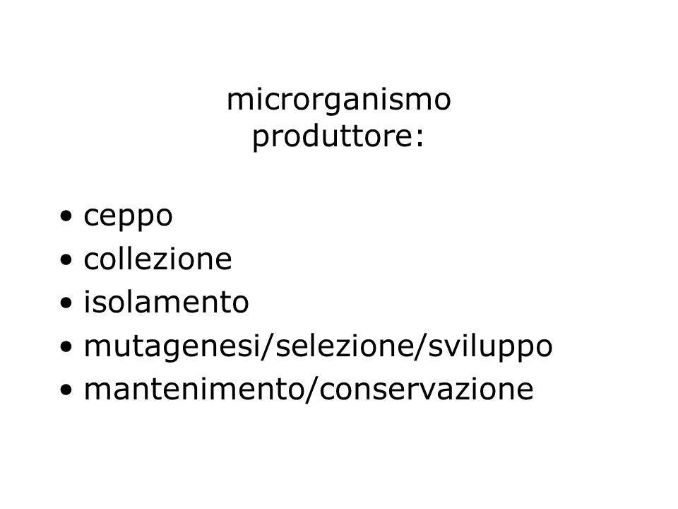 microrganismo produttore: ceppo collezione isolamento mutagenesi/selezione/sviluppo mantenimento/conservazione