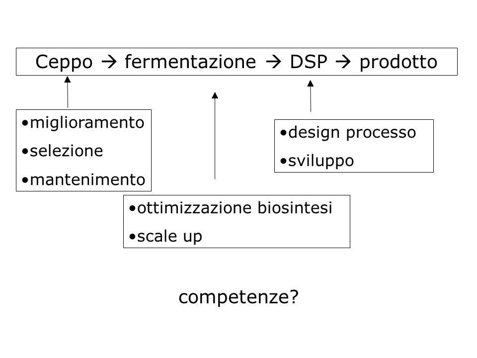 Ceppo  fermentazione  DSP  prodotto miglioramento selezione mantenimento ottimizzazione biosintesi scale up design processo sviluppo competenze