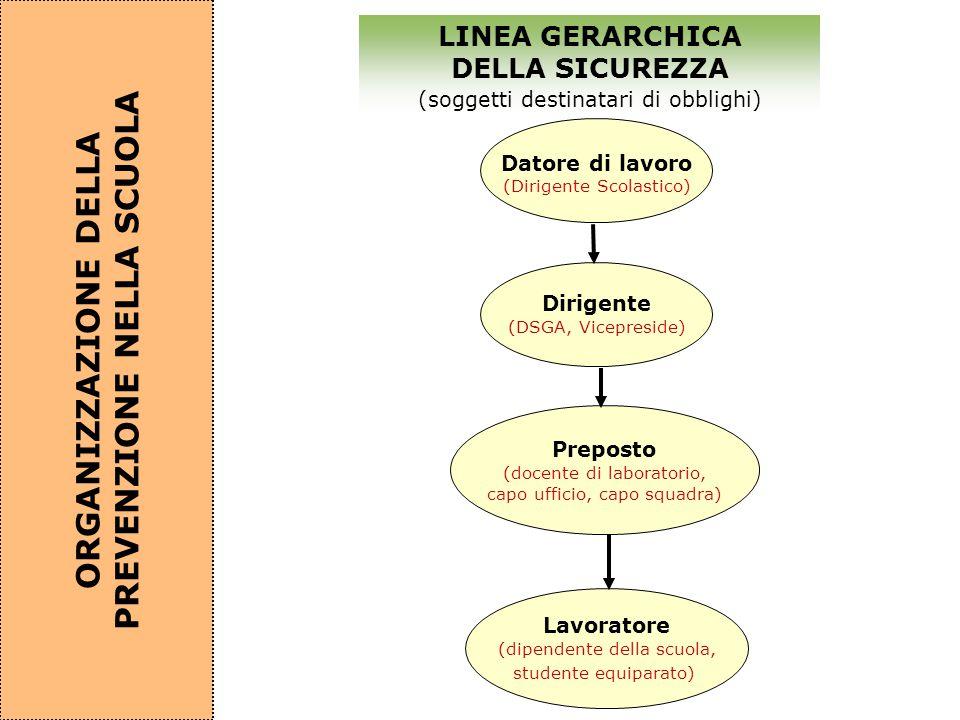 Datore di lavoro (Dirigente Scolastico) Dirigente (DSGA, Vicepreside) Preposto (docente di laboratorio, capo ufficio, capo squadra) LINEA GERARCHICA D