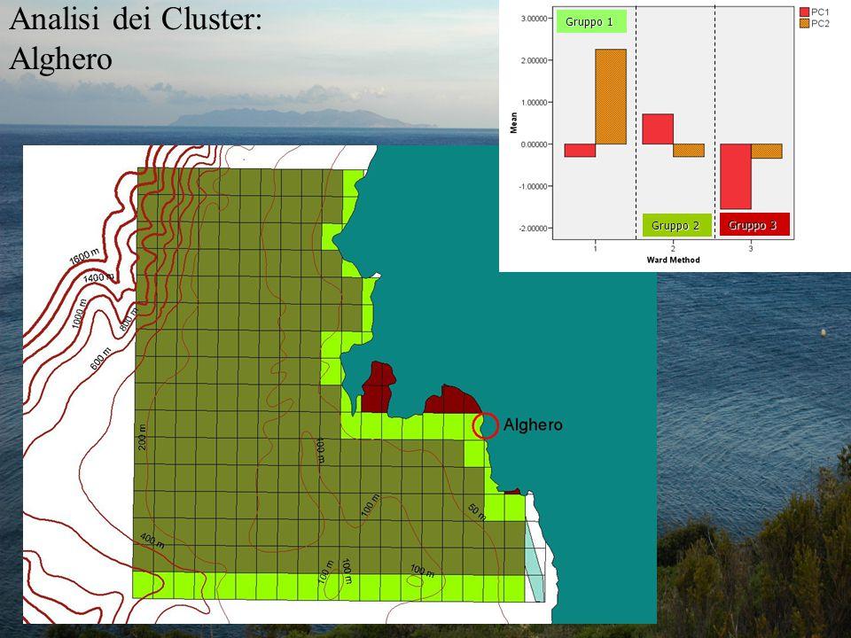 Gruppo 1 Gruppo 2 Gruppo 3 Analisi dei Cluster: Alghero