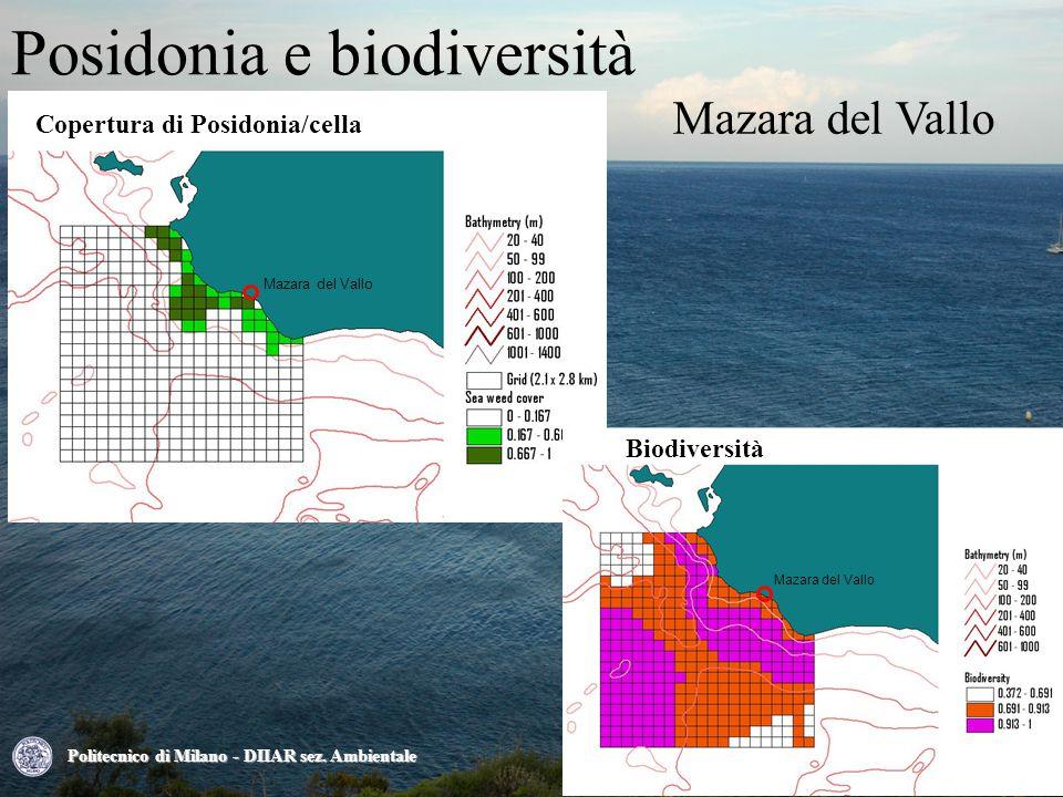 Mazara del Vallo Posidonia e biodiversità Politecnico di Milano - DIIAR sez.