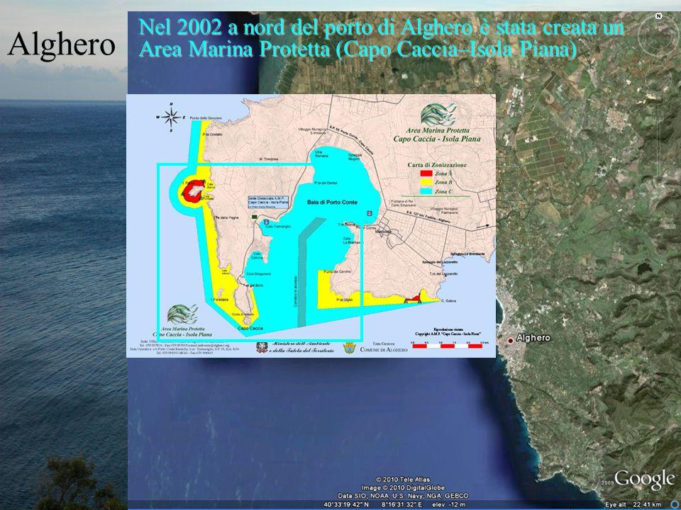 Alghero Nel 2002 a nord del porto di Alghero è stata creata un Area Marina Protetta (Capo Caccia–Isola Piana)