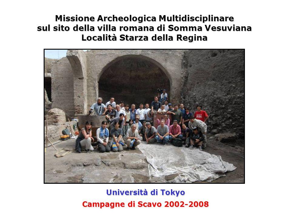 Campagne di Scavo 2002-2008 Missione Archeologica Multidisciplinare sul sito della villa romana di Somma Vesuviana Località Starza della Regina Università di Tokyo