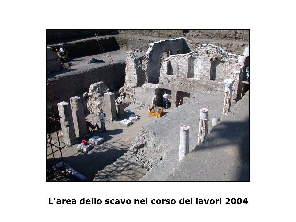 L'area dello scavo nel corso dei lavori 2004