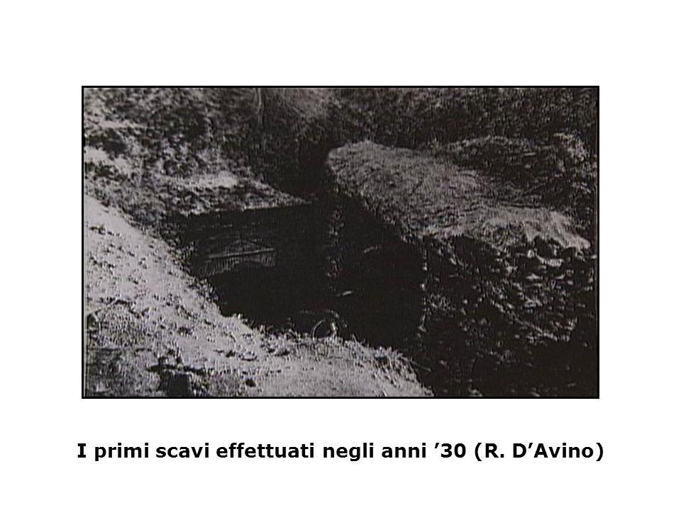 Pianta degli scavi effettuati negli anni '30 (R. D'Avino)