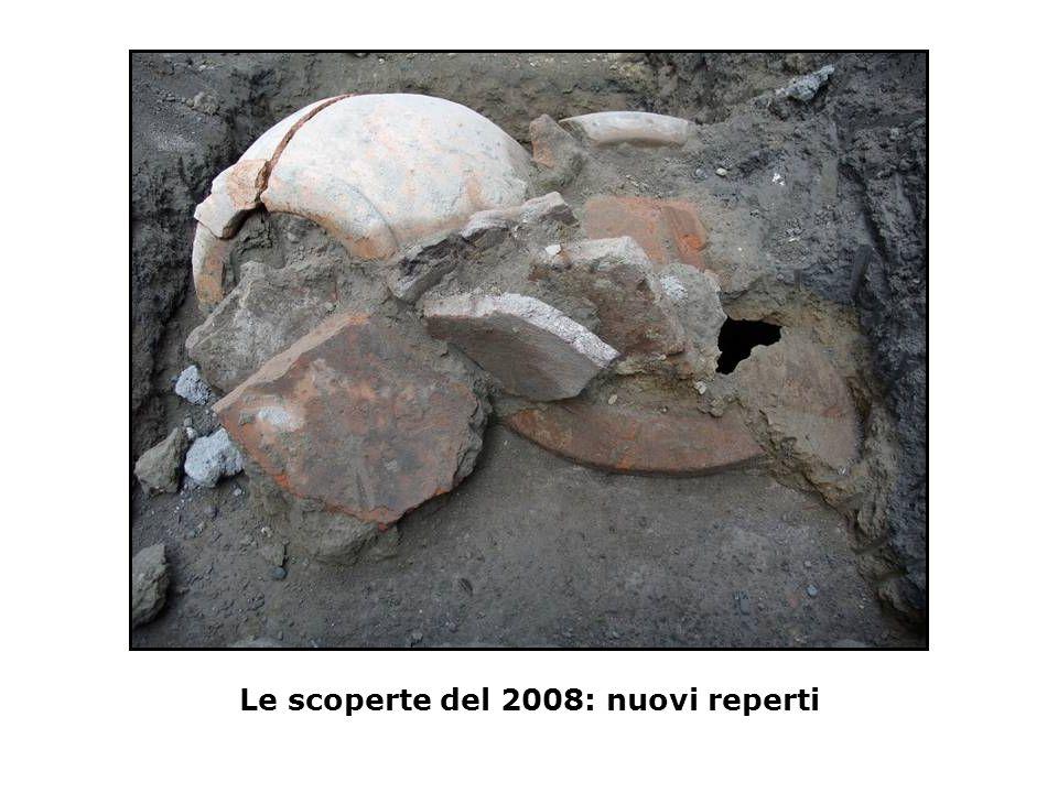 Le scoperte del 2008: nuovi reperti