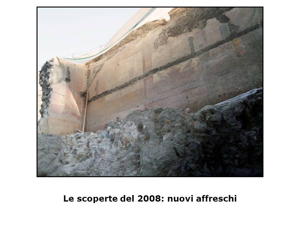 Le scoperte del 2008: nuovi affreschi