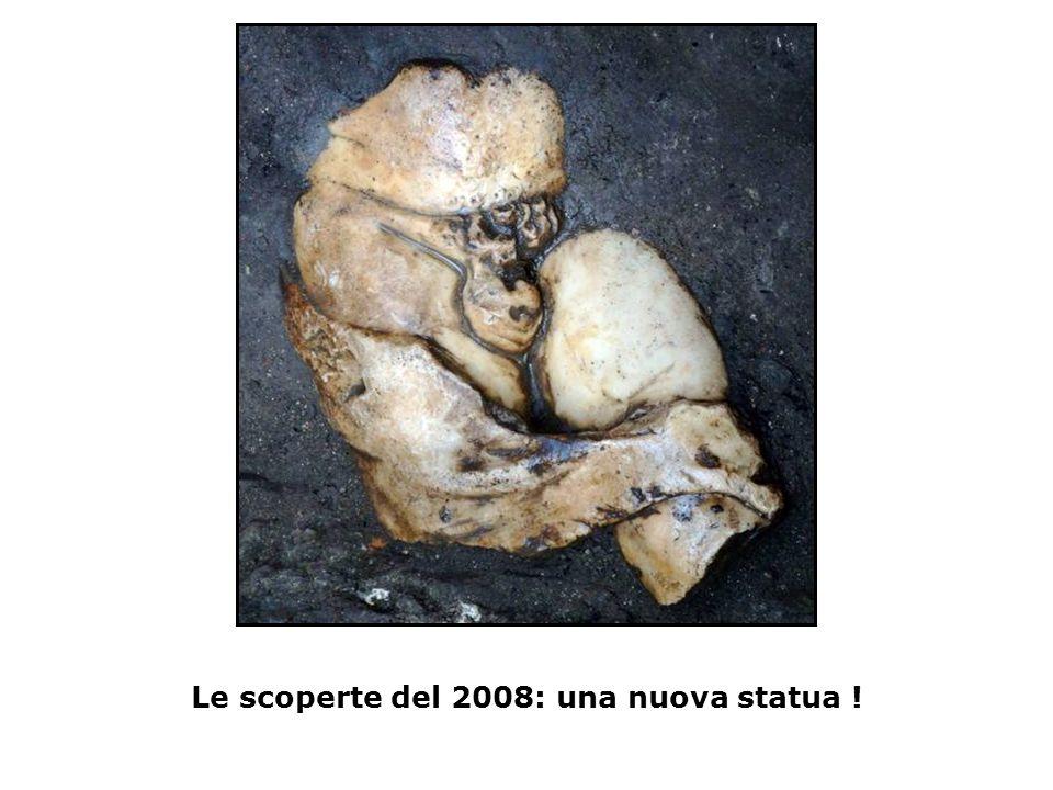 Le scoperte del 2008: una nuova statua !