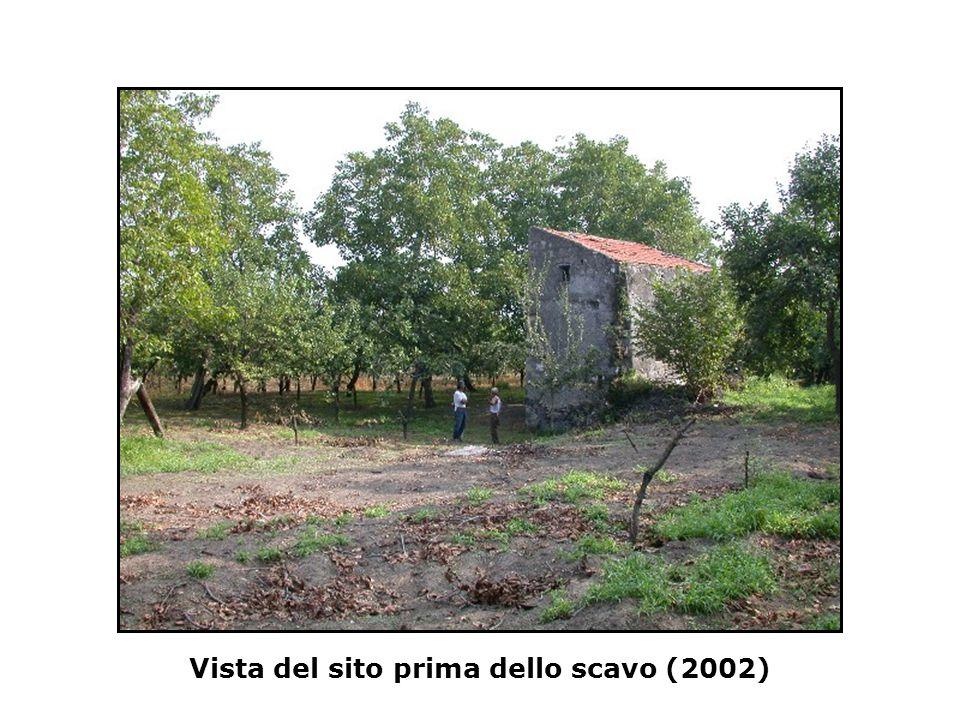 Vista del sito prima dello scavo (2002)