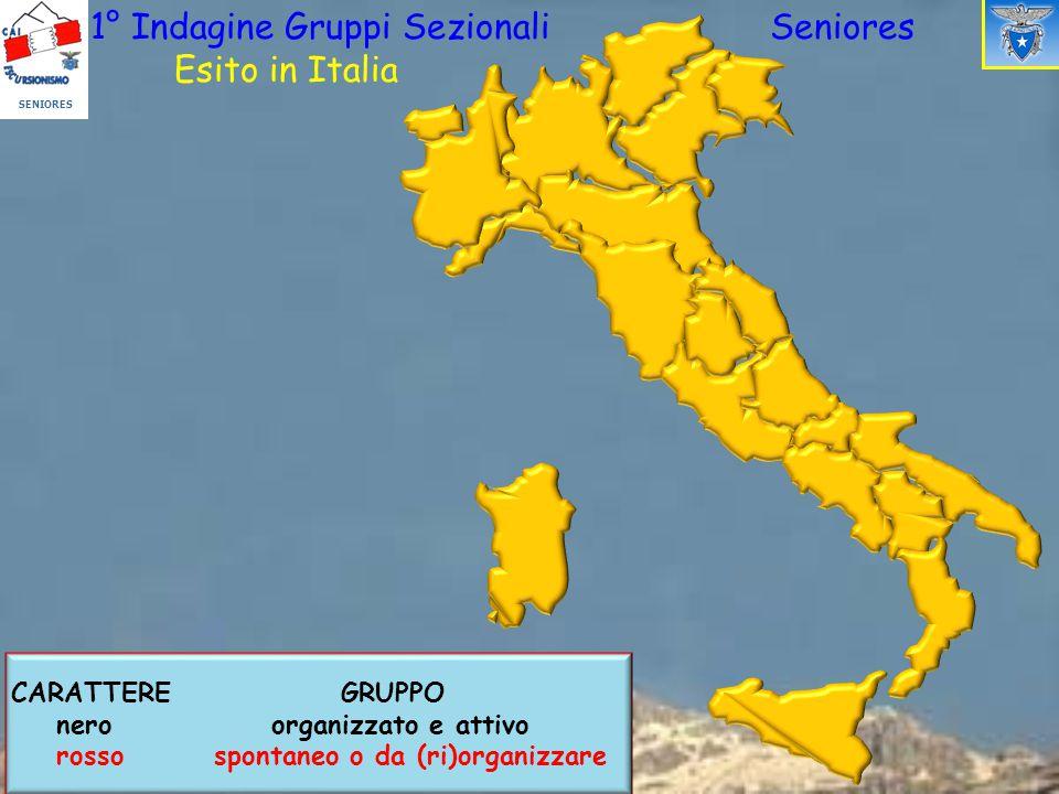 SENIORES 1° Indagine Gruppi Sezionali Seniores Esito in Italia CARATTERE GRUPPO nero organizzato e attivo rosso spontaneo o da (ri)organizzare