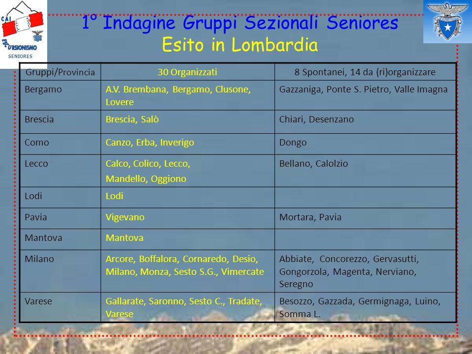 1° Indagine Gruppi Sezionali Seniores Esito in Lombardia SENIORES Gruppi/ Provincia 30 Organizzati8 Spontanei, 14 da (ri)organizzare BergamoA.V. Bremb