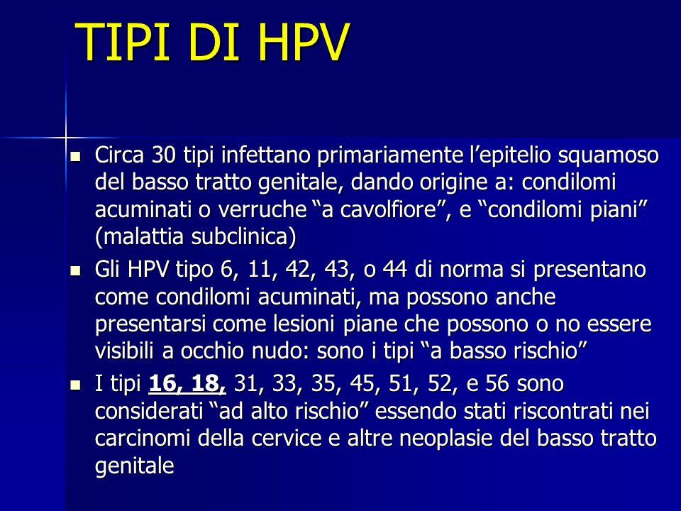 TIPI DI HPV Circa 30 tipi infettano primariamente l'epitelio squamoso del basso tratto genitale, dando origine a: condilomi acuminati o verruche a cavolfiore , e condilomi piani (malattia subclinica) Circa 30 tipi infettano primariamente l'epitelio squamoso del basso tratto genitale, dando origine a: condilomi acuminati o verruche a cavolfiore , e condilomi piani (malattia subclinica) Gli HPV tipo 6, 11, 42, 43, o 44 di norma si presentano come condilomi acuminati, ma possono anche presentarsi come lesioni piane che possono o no essere visibili a occhio nudo: sono i tipi a basso rischio Gli HPV tipo 6, 11, 42, 43, o 44 di norma si presentano come condilomi acuminati, ma possono anche presentarsi come lesioni piane che possono o no essere visibili a occhio nudo: sono i tipi a basso rischio I tipi 16, 18, 31, 33, 35, 45, 51, 52, e 56 sono considerati ad alto rischio essendo stati riscontrati nei carcinomi della cervice e altre neoplasie del basso tratto genitale I tipi 16, 18, 31, 33, 35, 45, 51, 52, e 56 sono considerati ad alto rischio essendo stati riscontrati nei carcinomi della cervice e altre neoplasie del basso tratto genitale