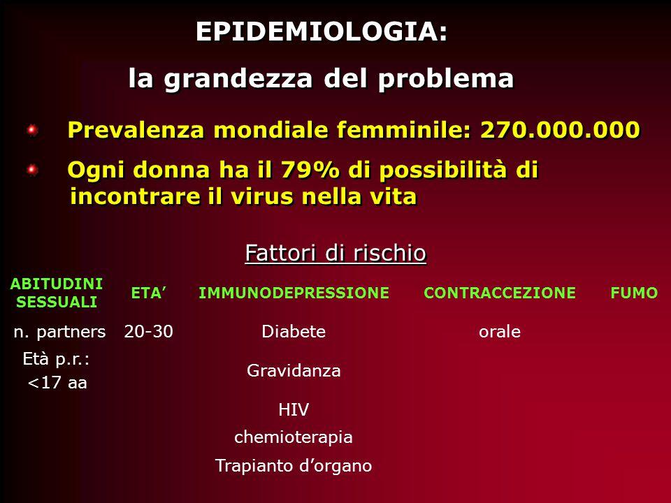 EPIDEMIOLOGIA: la grandezza del problema EPIDEMIOLOGIA: la grandezza del problema Fattori di rischio ABITUDINI SESSUALI ETA'IMMUNODEPRESSIONECONTRACCEZIONEFUMO n.