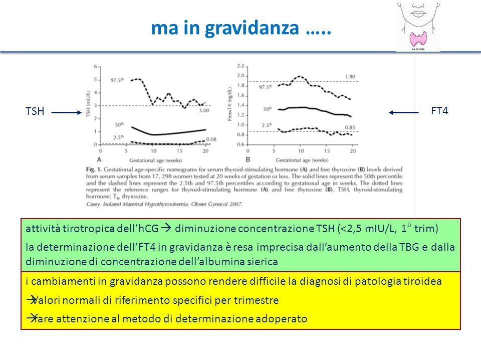 Ipotiroidismo Frequenza e trattamento TSH elevato almeno nel 2%-3% di tutte le donne in età fertile non incinte e apparentemente sane 0,3%-0,5% con ipotiroidismo manifesto (↑ TSH e ↓ FT4) - ma in gravidanza anche se TSH >10 mIU/L e → FT4 2%-2,5% con ipotiroidismo subclinico (↑ TSH e → FT4) In una donna in trattamento con LT4, il valore pregravidico di TSH va mantenuto <2,5 mIU/L.