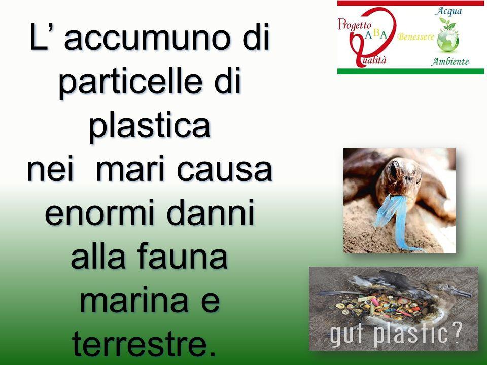 L' accumuno di particelle di plastica nei mari causa enormi danni alla fauna marina e terrestre. nei mari causa enormi danni alla fauna marina e terre