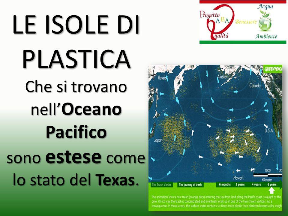 LE ISOLE DI PLASTICA Che si trovano nell' Oceano Pacifico sono estese come lo stato del Texas.