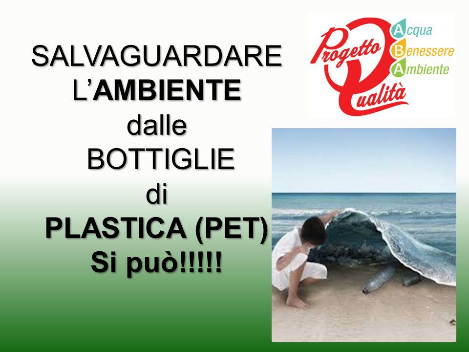 SALVAGUARDARE L'AMBIENTE dalle BOTTIGLIE BOTTIGLIEdi PLASTICA (PET) Si può!!!!!