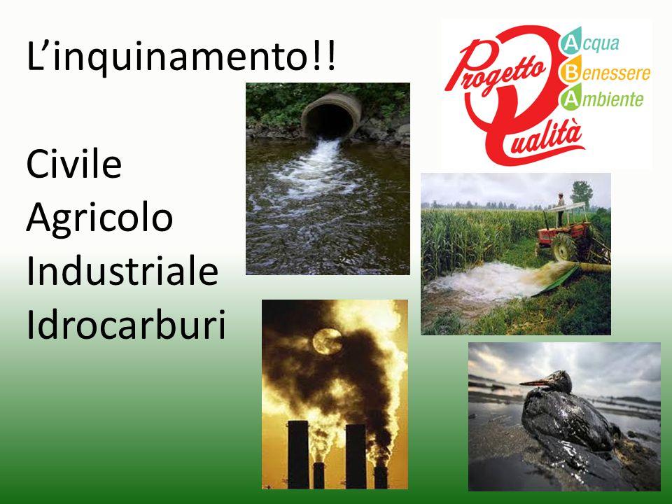 L'inquinamento!! Civile Agricolo Industriale Idrocarburi