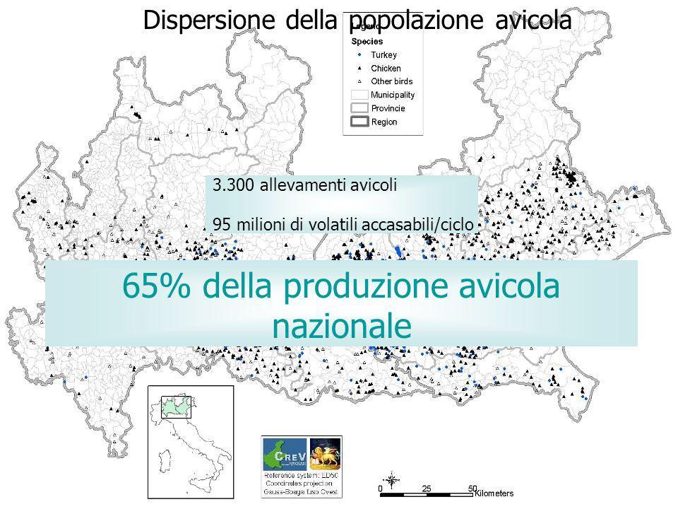 Dispersione della popolazione avicola 65% della produzione avicola nazionale 3.300 allevamenti avicoli 95 milioni di volatili accasabili/ciclo