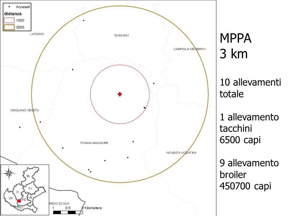 MPPA 3 km 10 allevamenti totale 1 allevamento tacchini 6500 capi 9 allevamento broiler 450700 capi