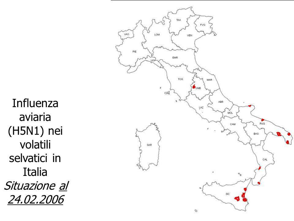 Influenza aviaria (H5N1) nei volatili selvatici in Italia Situazione al 24.02.2006