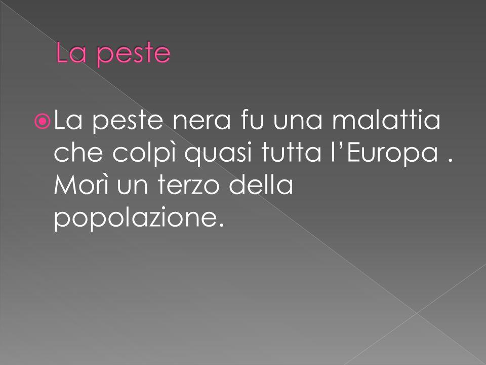  La peste nera fu una malattia che colpì quasi tutta l'Europa. Morì un terzo della popolazione.