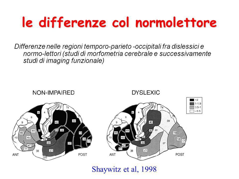 Differenze nelle regioni temporo-parieto -occipitali fra dislessici e normo-lettori (studi di morfometria cerebrale e successivamente studi di imaging