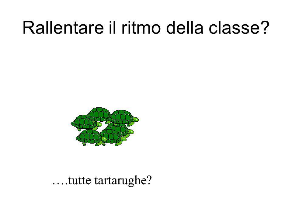 Rallentare il ritmo della classe? ….tutte tartarughe?