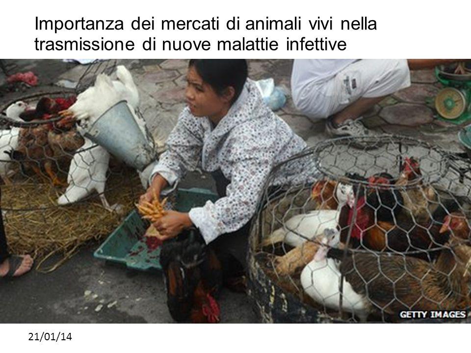 21/01/14 Importanza dei mercati di animali vivi nella trasmissione di nuove malattie infettive